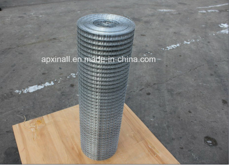 Hot Dipped Galvanized Welded Wire Mesh Panel Good Quality Famous Brand Product