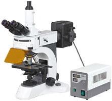Ht-0200 N-800f Laboratory Biological Fluorescent Microscope