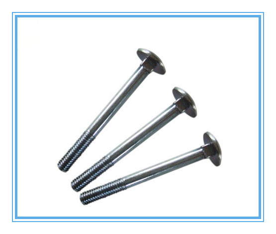 Mushroom Head Square Neck Bolt DIN603