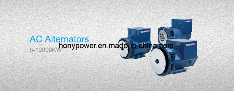 St Stc 2kVA 3kVA 5kVA 7.5kVA 8kVA 10kVA 12kVA 15kVA 20kVA 24kVA 30kVA 1/3 Phase 110/220/230/240V 50Hz AC Synchronous Brush Diesel Power Electric Alternator