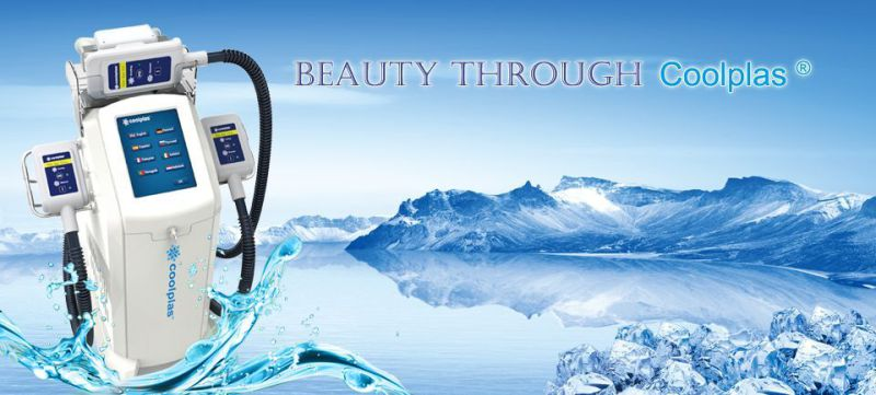 Perfect Effect Slimming Machine Fat Freezing Cryolipolysis Equipment