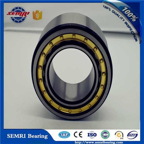 Best Seller of Roller Bearing (NF208) High Precision