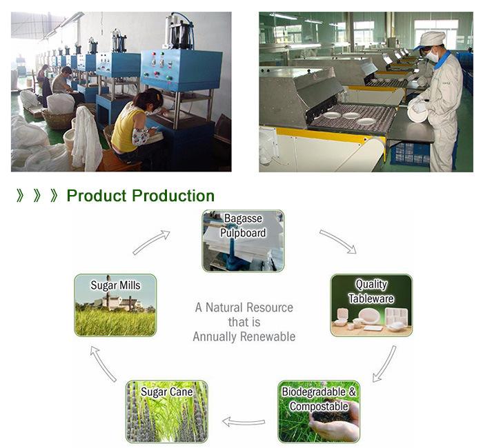 FDA Certification Sugarcane Bagasse Disposable Biodegradable Cake Plate
