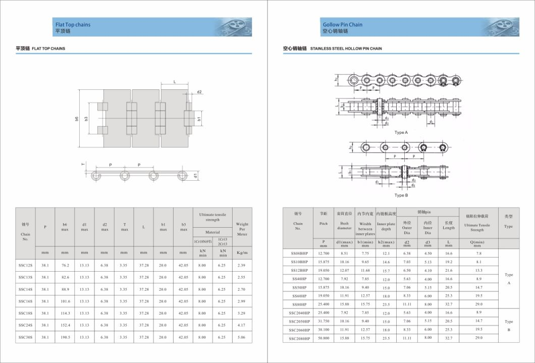 Driving Chains Short Pitch Precision Single Roller Chain B Series Stainless Steel Ss24b1 28b1 32b1 40b1 48b1 56b1