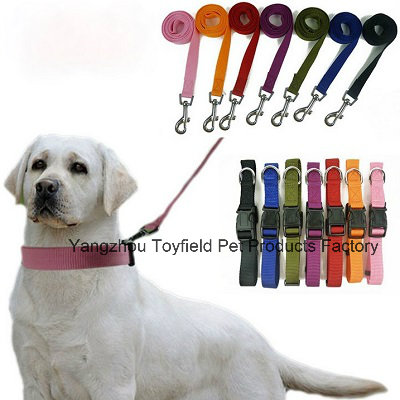 Dog Collar Leash Harness Cat Product Supply Pet Collar