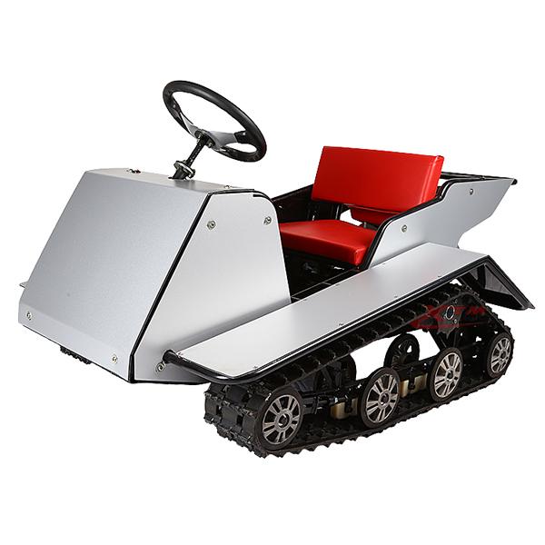 RC Gas Snow Ski Cheap Kids Snowmobile