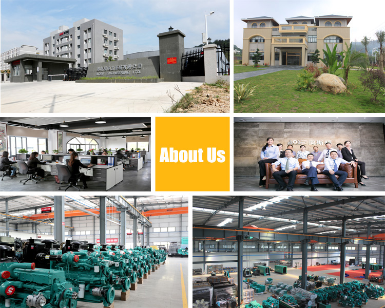 Professional Power Generator Manufacturer From China