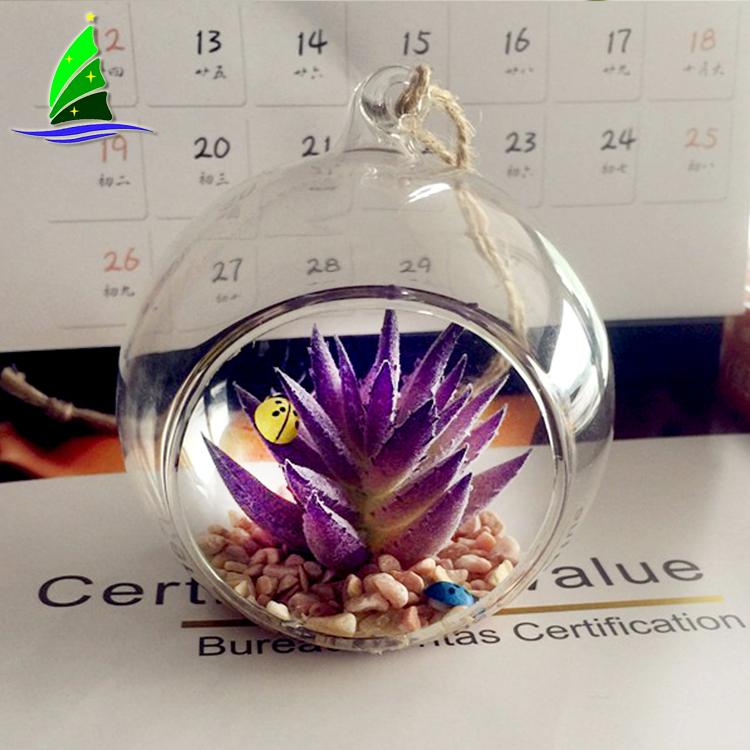 Succulent Flowerpot Container Glass Terrarium