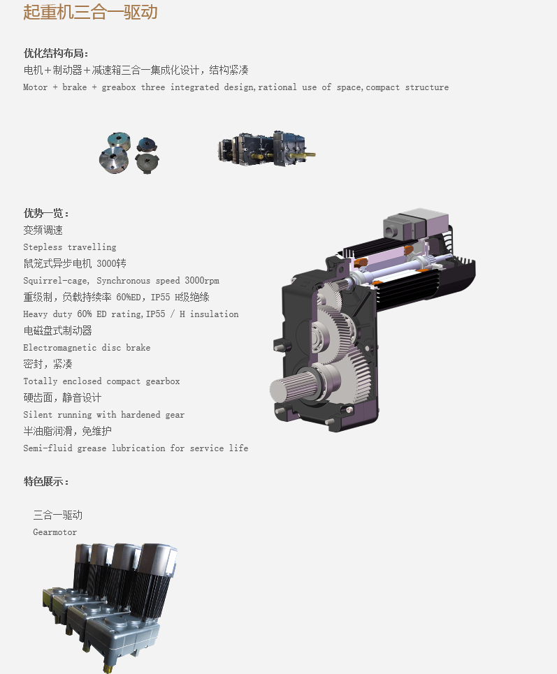 Frequency Control Hoisting Motor for Sale