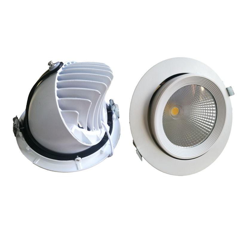 10W/15W/20W/30W/40W Adjustable COB LED Trunk Down Light