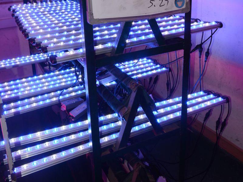 75W 100V-240V AC 120cm LED Aquarium Bar