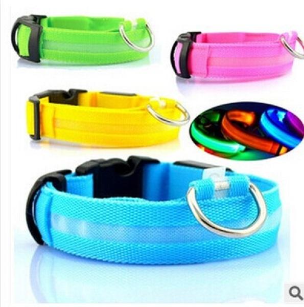 Dog LED Collar Flashing Safety Pet Collar