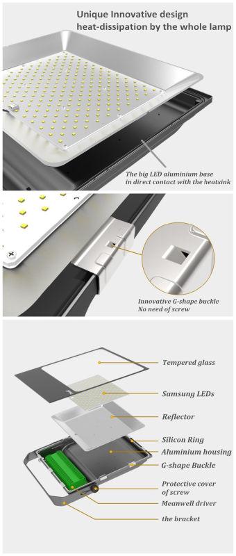 Unique Different High Quality IP65 100W LED Flood Light (QH-FLTG-100W)