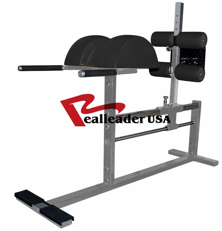 Fitness Equipment/Gym Equipment for Glute Ham Raise (FW-2029)