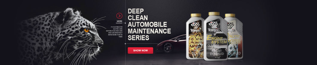 High Quality Catalytic System Cleaner