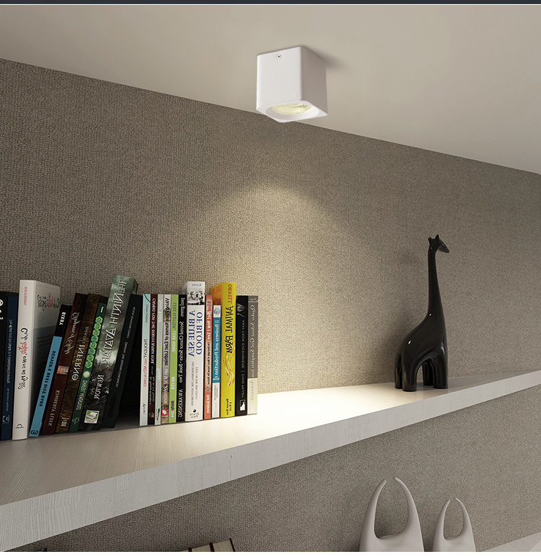 Surface mounted down light