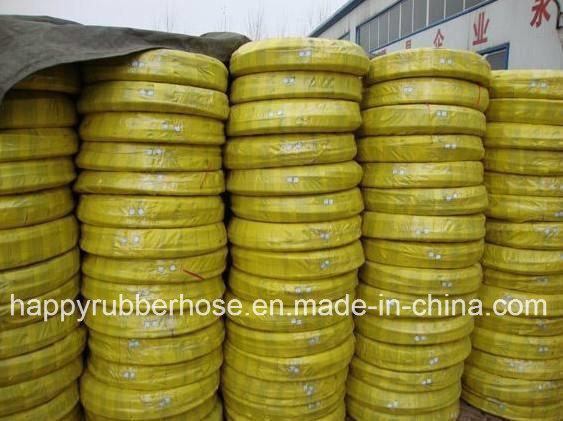 LPG Hose/Gas Hose/Rubber Hose/Liquefied Petroleum Gas
