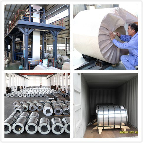 G90 2.0mm Dx51d Galvanized Steel Strip in Coils