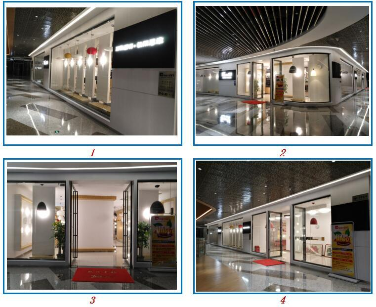 Modern Interior Decoration Hotel LED Ceiling Light
