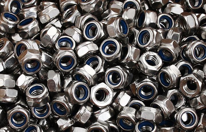 Ss 304 Hex Nylon Lock Nut