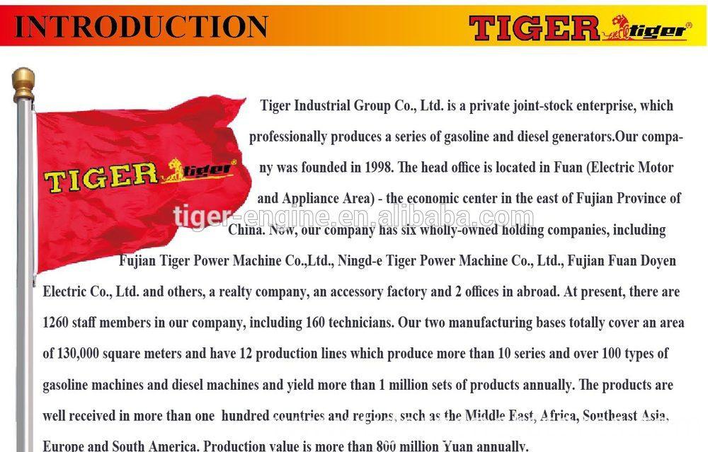Инструкция Как Завести Генератор Tiger