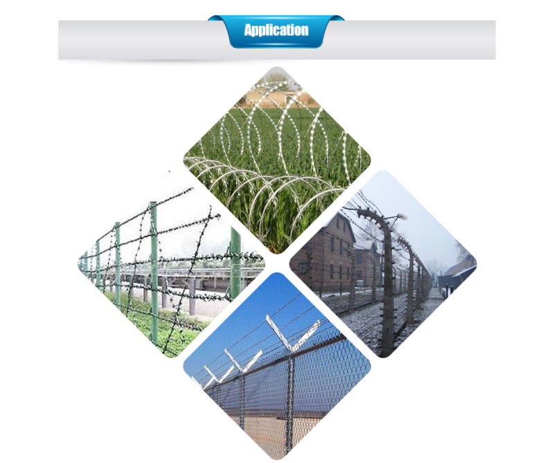 PVC Coated Barbed Wire /Hot Dipped Galvanized Bwg18 Bwg15 Bwg16 Bwg16.5 400m 500m Barbed Wire