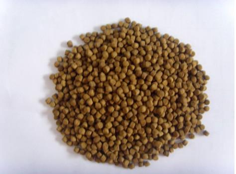 Export Standard Fish Feed