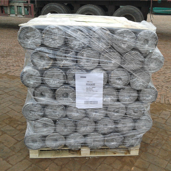 Hot Dipped Galvanized Hexagonal Wire Mesh for Poultry