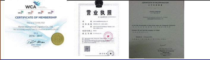 International Ocean Service China Agent From Shenzhen/Shanghai/Tianjin to Karachi