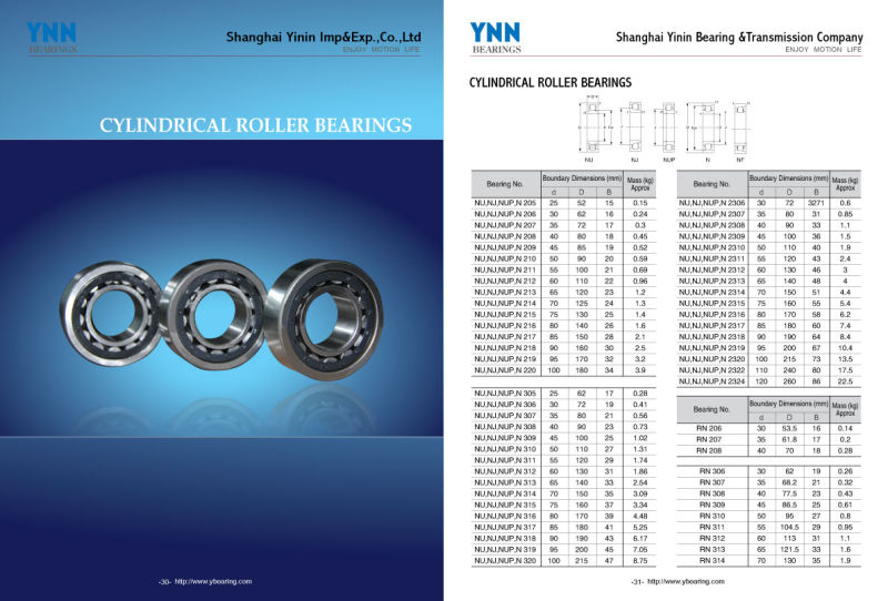 China Gold Supplier Eccentric Cylindrical Roller Bearings