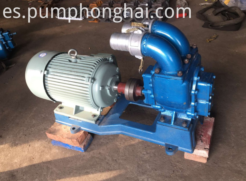 Gear Pump for Oil