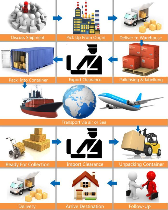 Freight Forwarding Cy-Cy Delivery Service LCL Ocean Sea Shipping Ningbo Qingdao Shanghai to USA Canada Singapore