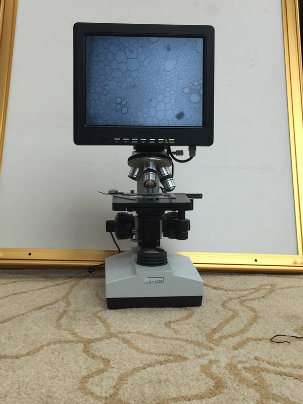 10 Inch Screen Microscope Digital and Electric for Research Shd2320
