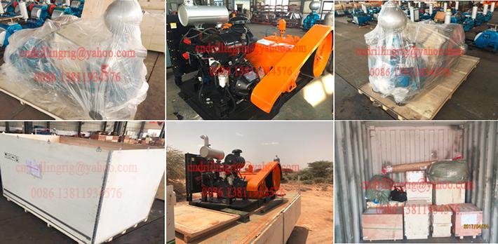 Portable Air Reciprocation Piston Sludge Suction Pump