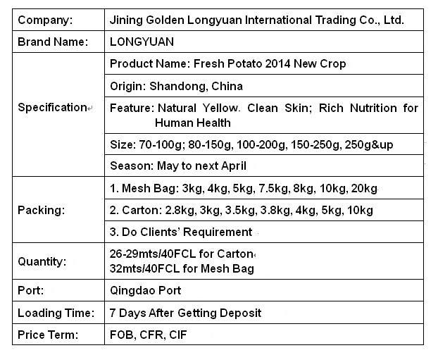 2016 New Crop Fresh Potato Shandong