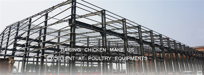 Poultry Farm House Design Drawing for Layers In Kenya Farm
