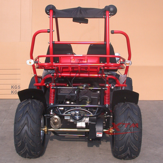 China Safe Automatic CVT 150cc Go Kart Motor with Reverse
