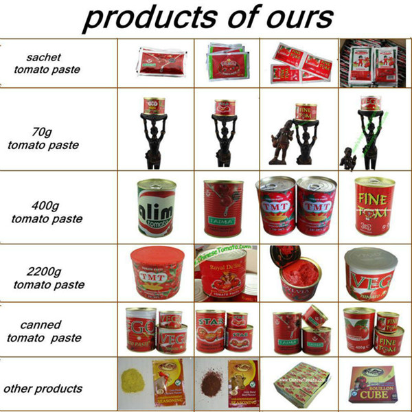 Gino Quality 2200 G Canned Tomato Paste with Normal Open Tin