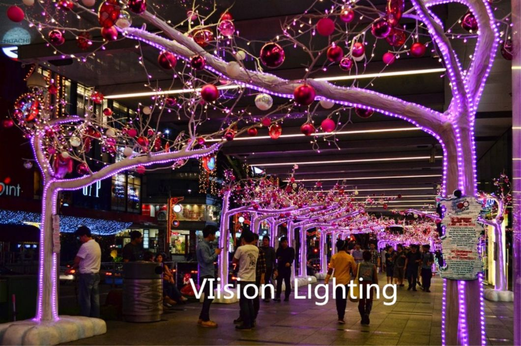 RGB Round Dimmable LED Rope Lights for Christmas Ornament