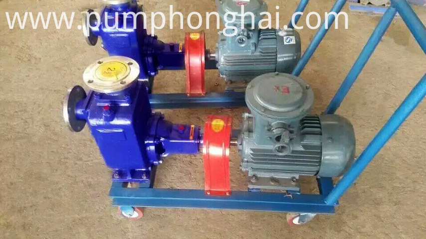One Year Horizontal Self-priming Pumps