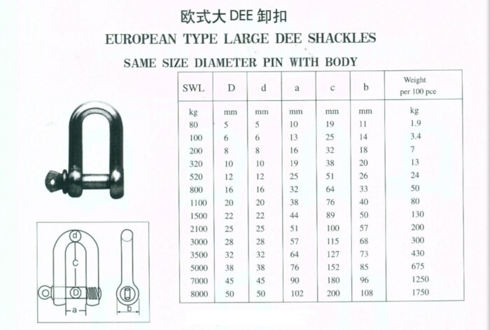 European Type Large Dee Shackle with Pin Stainless Steel