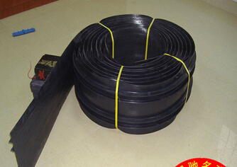 Expansion Joint Rubber Water Stop