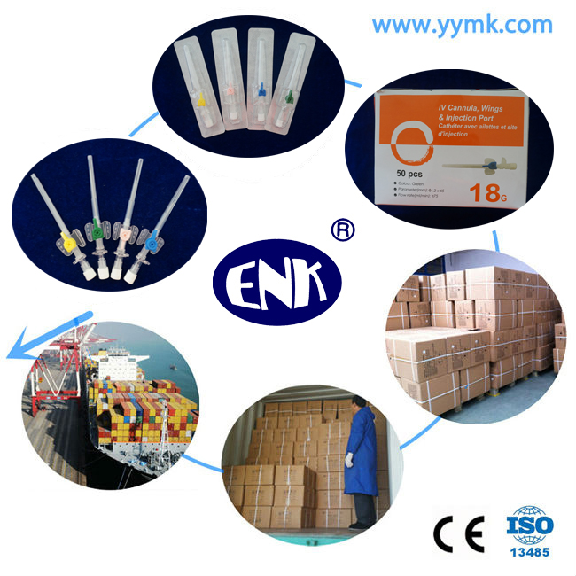 Blister Packed Medical Disposable IV Cannula/IV Catheter Wing Type 18g