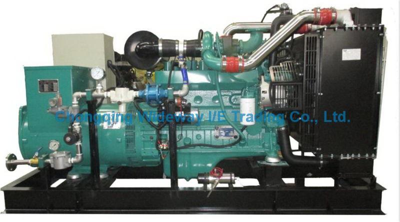 Ly6LG160kw High Quality Eapp Gas Generator Set