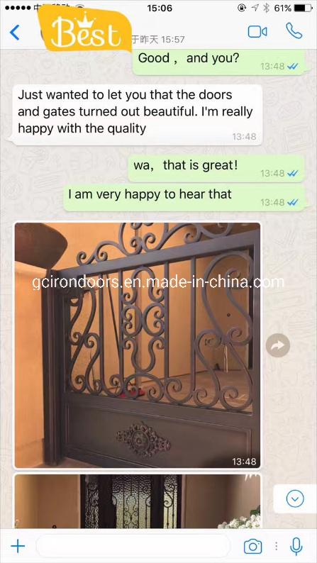 Puertas de acero de diseño clásico con luz lateral.