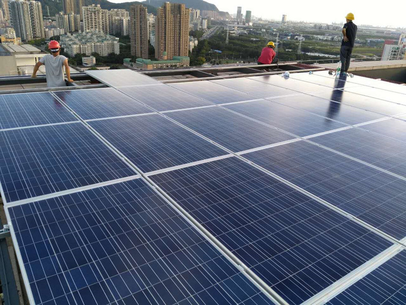 Poly Solar Panel for Different Size