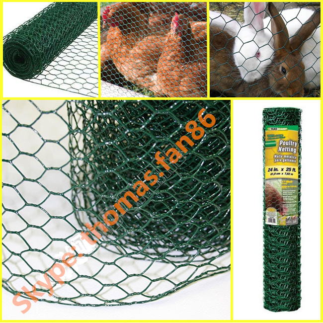 PVC Poultry Netting / Chicken Mesh / Hexagonal Wire Mesh