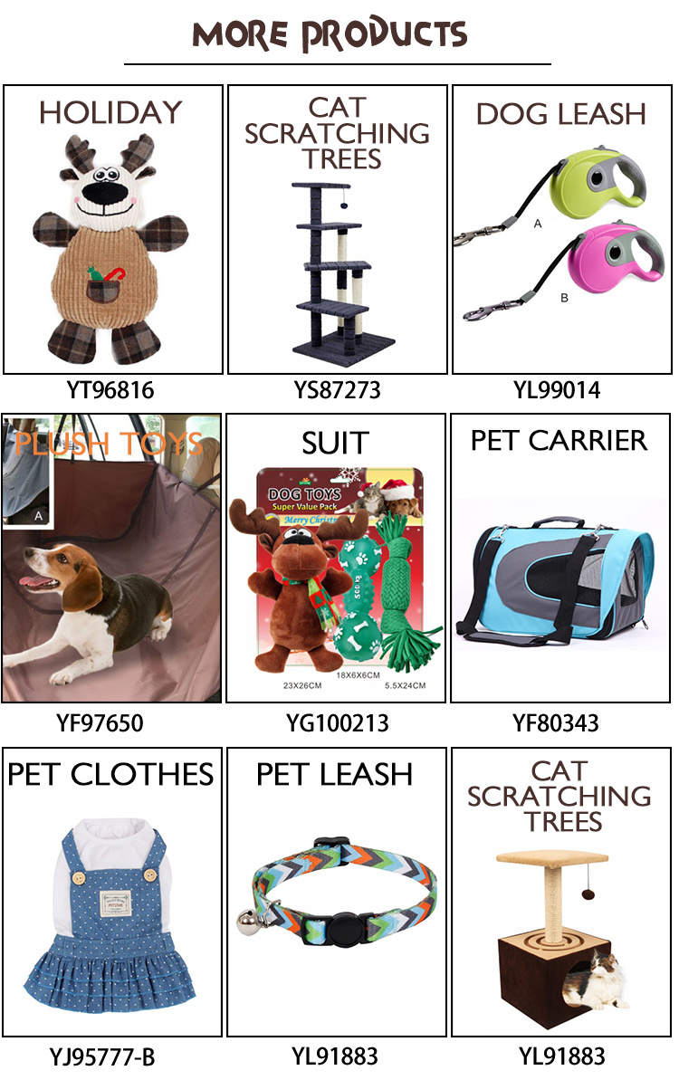 New Collection Portable Outdoor Travel Backpack for Dog