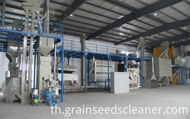 Grain seed cleaning plant