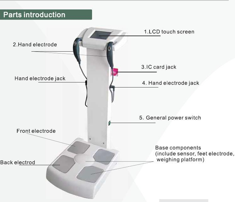 Human Body Fat Analyzer Machine/Body Fat Testing Analyzer/Inbody Composition Scale Equipment
